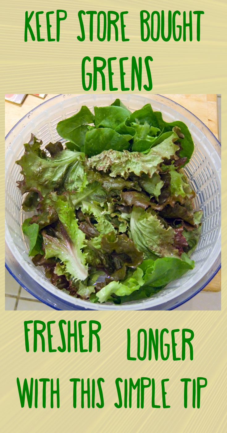 how to store washed salad leaves